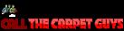 Carpet Guys Logo